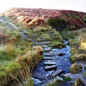Stepping stones on Haworth Moor