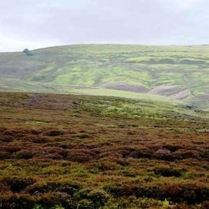 View across the moor to Top Withins