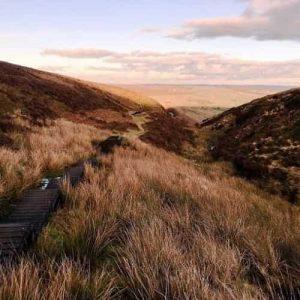 Trail along gun butts