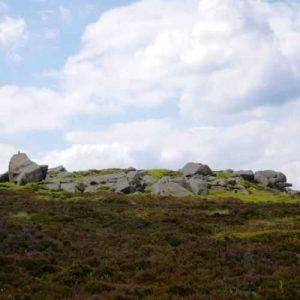 Alcomden Stones view