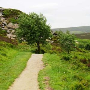 Penistone Hill Country Park path