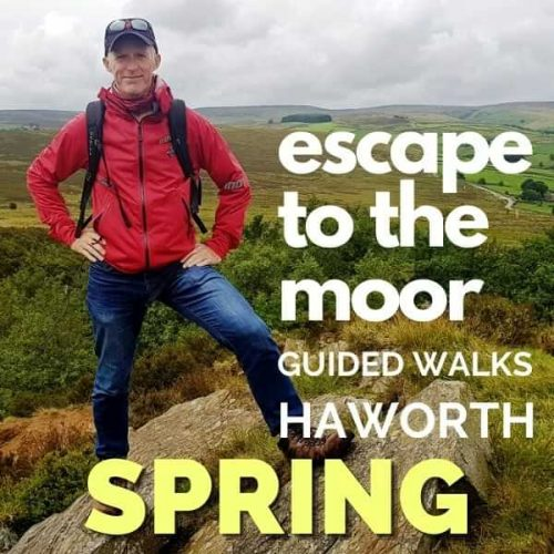 Escape To The Moor Guided Walks - Spring